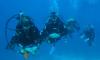 Δίπλωμα Αυτόνομης Κατάδυσης PADI (1ο Αστέρι) - 03