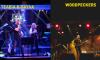 Πλατεία Κοτζιά: 120 Ετικέτες Μπύρας + Live Μουσική - 09