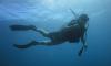 Κατάδυση Γνωριμίας (Scuba Diving) στα Λιμανάκια - 16